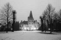Gruselschloss Tremsbüttel (Lilongwe2007) Tags: deutschland schleswig holstein tremsbüttel nebel wetter schloss gruselig schwarz weis schnee winter eis architektur