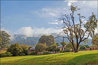 On the Grounds - Port Arthur Historic Site, Tasmania, Australia