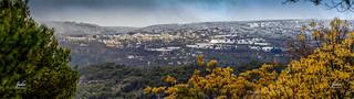 Panorama Alocen