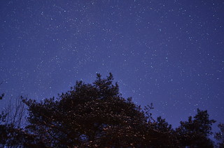 Night Sky Photos with my new 35mm f1.8!