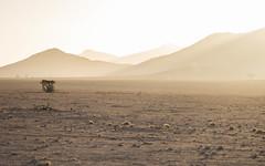 Sunset in NamibRand (Melvinia_) Tags: olympusomdem1 namibia namibie desert désert namibrand naukluft namibrandfamilyhideout landscape sand africa afrique afriqueaustrale sunset coucherdesoleil geoafrica