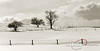 Snowy Field (Lerro Photography) Tags: winter snow snowy farm field trees tree cloud clouds fence fenceline