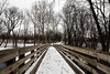 """A winter day (Millie Cruz * """"On and Off-Busy"""") Tags: cloudy outdoors nature winter day sad bridge wooden wood snow trees quittiecreeknaturepark annvillepa park soe"""
