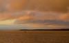4631 birds over the Hittarp reef (frankmh) Tags: landscape seascape bird sky hittarp reef skåne sweden outdoor öresund