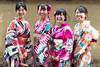 The Lovely smiling young Ladies ...Gion Kyoto (geolis06) Tags: geolis06 asia asie japan japon 日本 2017 kyoto gion kimono cloth suit vêtement tradionnel portrait street rue japon072017 olympusm918mmf4056 patrimoinemondial unesco unescoworldheritage unescosite lady beauté lovely