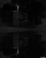 Upside down. (Lee1885) Tags: post monochrome street road night dark gate light cobbles chester cheshire mirror reflections sign blackandwhite lane parkside oneway tree