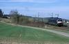 182 598  Fahlenbach  24.03.11 (w. + h. brutzer) Tags: eisenbahn eisenbahnen train trains deutschland germany elok eloks railway lokomotive locomotive zug dispolok es64u2 182 mrce webru analog nikon taurus