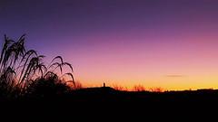 Tiny castle on the hill [explored 25/01/2018 ] (mandysp8) Tags: horizon sunrise autumn castle silhouette