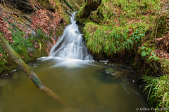 Waterfall (gillesfrancotte) Tags: 2018 amblève ardennes autumn aywaille d800 hornay january janvier nikon ninglinspo outdoor sedoz automne cascade creek eau fall forest landscape longexposure nature ruisseau stream torrent undergrowth underwood water waterfall waterscape wood theux wallonie belgique be