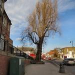 Tottenham High Road - near Library Court thumbnail