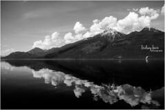 LindsayLewin_photography_B.C._Canada_2017_0139 (lindsay.lew) Tags: canada britishcolumbia bc kootenay lake nature mountains mountainlake summer black white