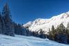 P2MK0545-Bearbeitet.jpg (Martin Klöckner) Tags: snow schnee brand brandnertal austria tree tanne