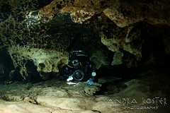 IMG_9617 (2) (SantaFeSandy) Tags: ginnie ginniesprings green guy cavern cave canon camera catfish colors caves color tannins diving devilseye devilsear sandrakosterphotography sandrakosterphotographycom sandykoster sandy sandra scuba santafesandysandrakosterphotographycom scubadiving bryant silhouette passion love it mystery mysterious intrigue