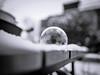 black.white.bubble (_andrea-) Tags: seifenblase samyang 1820mm frozen bubble icecrystals snow