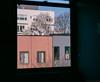 Around the house (GPhace) Tags: 127mm 2018 brooklyn fujicolorpro400h fuji mamiya nyc rb67pros winter analoguephotography manualfocus filmphotography mediumformat 120