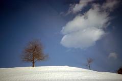 Silenzio (tullio dainese) Tags: 1983 neve snow
