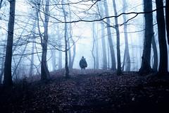 Walking Dad (Gruenewiese86) Tags: harz nebel wald wernigerode canon6d forest forestscape fog foggy 35mm 35 germany