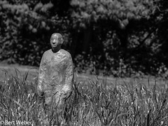 Unbenannt (weber.bert) Tags: kunst köln analogefotografie blackwhite inbiancoenero noiretblanc art grauwertabstufungen sw arte beauxarts