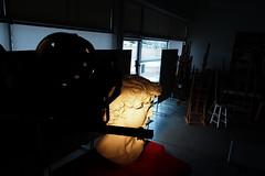 P2020135 (photos-by-sherm) Tags: michelangelo bust david replica cameron art museum wilmington nc pancoe center winter spotlight floodlights kissing