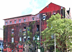 Red Wall (MYANMAR) (ID Hearn Mackinnon) Tags: dilapidated ruins ruined ruin old fading colonial era age 2017 myanmar burma burmese south east asia asian red wall yangon rangoon central architecture historic history building