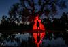 Trees and red light.. (lulo92) Tags: tube tubelihgt tubelight light red redlight womn girl woman sun sundown sunset reflection water salento puglia samyang nikon too top