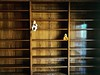 Bookends (ricko) Tags: doll duck stuffedtoy shelves bookshelves toys 61365 2018 library