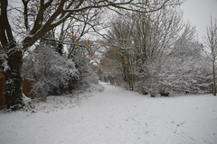 Leicestershire Snow (MYounger14) Tags: leicestershire village snow