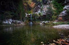 Enchanted forest (CT photographie) Tags: frenchriviera france french flickr filtres alpesmaritimes automne exterieur eau foret canon capture ctphotographie calme nature landscape longexposure leefilter