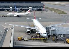 A330-342   Cathay Dragon   B-LAB   HKG (Christian Junker   Photography) Tags: nikon nikkor d800 d800e dslr 70200mm aero plane aircraft airbus a330342 a330300 333 330 a333 a330 cathaydragon dragon ka hda ka820 hda820 dragon820 blab oneworld heavy widebody gate e18 airline airport aviation planespotting 673 hongkonginternationalairport cheklapkok vhhh hkg clk hkia hongkong sar china asia lantau regalairporthotel christianjunker flickraward flickrtravelaward zensational hongkongphotos worldtrekker superflickers