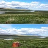 the beautiful surroundings of Guesthouse Hofsstadir -Skagafjordur region - North-Iceland (June 2017) (Kristel Van Loock) Tags: june2017 juni2017 iceland islandia islande islanda island icelandtrip icelandroadtrip icelandtravel lovesiceland visiticeland northiceland noordijsland northerniceland skagafjörðurregion httpwwwhofsstadiris travel travelphotography traveliniceland viaggio voyage guidetoiceland beautifuliceland hofsstadir guesthousehofsstadir guesthouse