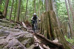 Team-Konstructive-Dream-Bikes-com-BC-BikeRace-RoughTrail