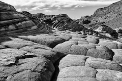 Brain Rock Garden (csnyder103) Tags: bw arizona thewave coyotebuttes sandstone landscape canoneosm5 canonefm18150