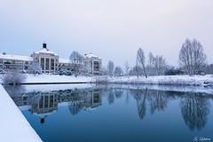 Lac Bussy (Guillaume7762) Tags: miroir reflet lac etang neige calme bleu