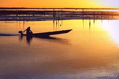 """___ una barca che va! ___""""explore"""" (erman_53fotoclik) Tags: erman53fotoclik canon eos 500d barca va preofilo riflesso tramonto secca acqua pali sunset persona figura motore andare calda atmosfera controluce"""