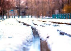 poésie ferroviaire (photosgabrielle) Tags: photosgabrielle urban winter hiver railway cheminfer vieuxmontréal oldmontreal neige snow