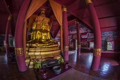 Thailand - Bangkok - Ancient City 80_Temple interior_DSC6295 (Darrell Godliman) Tags: thailandbangkokancientcity80templeinteriordsc6295 fisheye 8mm buddha temple samyang