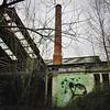 A grey season / #art by #KlaasVanderLinden. . #Gent #Belgium #streetart #graffiti #streetartbelgium #gentje #streetart_daily #urbanart #urbanart_daily #graffitiart_daily #graffitiart #streetarteverywhere #mural #wallart #ilovestreetart #igersstreetart #rs (Ferdinand 'Ferre' Feys) Tags: instagram gent ghent gand belgium belgique belgië streetart artdelarue graffitiart graffiti graff urbanart urbanarte arteurbano ferdinandfeys klaasvanderlinden urbex