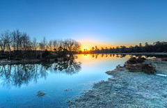 Icy Waters (nicklucas2) Tags: landscape newforest pond slufters sunrise cold frost ice frozen tree water nature