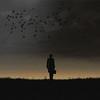 Sir Lhouette (Corinaldesi Roberto) Tags: sir sunrise silhouette birds single