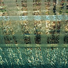Window Patterns (mishko2007) Tags: korea 1224mmf4