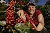 Oscicala, Morazan, El Salvador (Maren Barbee) Tags: coffee sustainablecoffee café elsalvador asa blueharvest cosechaazul