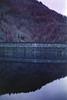 film (La fille renne) Tags: film analog 35mm outdoor lafillerenne nature pink purple canonae1program 50mmf18 owaxinfraredcolor400 infrared infraredfilm landscape