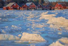 Seaside walk (RdeUppsala) Tags: sikhjälma uppland sverige suecia sweden sea ice invierno is havet hielo houses hus hav baltic báltico mar östersjön outdoor winter vinter casas aldea by hamlet