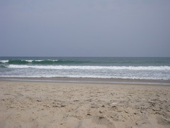 Cape Hatteras Beach (Itinerant Wanderer) Tags: capehatterasnationalseashore outerbanks northcarolina atlanticocean