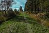 Wanderung Hohes Venn Ostbelgien 2016.10.13 (elmar2018) Tags: wanderung hohes venn ostbelgien hohesvenn roetgenkonzen