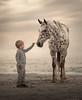 Friends (sveta_butko) Tags: sand beach child boy little horse appaloosa one person seashore sunset warm fashion cute tender friendship childhood animal with hand sea