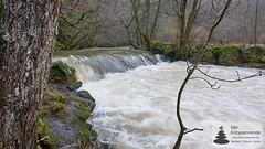 Üßbach mit Hochwasser