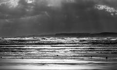Sea (Derwisz) Tags: sea scarborough seascape seaside waves water yorkshire england englandseastcoast uk unitedkingdom canon canoneos40d blackwhite bw monochrome blackandwhite