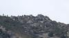 """Colori di Liguria, dopo le bufere gelide del """"Burian""""  rocce e vegetazione prive di colore  (explored) (Carla@) Tags: liguria italia europa canon"""