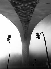 Arrábida Bridge (Francisco (PortoPortugal)) Tags: 0222018 20171003fpbo6308 bw nb pb monochrome pontedaarrábida arrábidabridge nevoeiro fog porto portugal portografiaassociaçãofotográficadoporto franciscooliveira